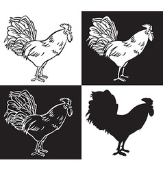 Drawing hand cock vector