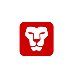 lion head with square vector image