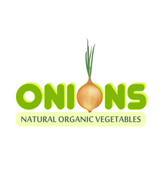 logo with onion vector image