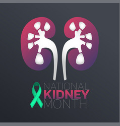 national kidney month icon design infographic vector image