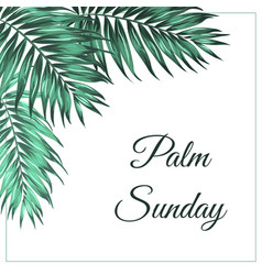 Palm sunday corner frame decoration tropical green vector