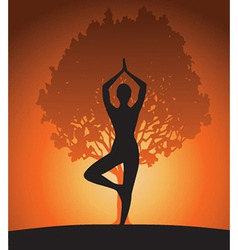 Woman in yoga tree asana vector