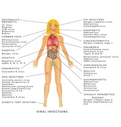 Viral infections vector image