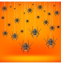 Set od Grey Spiders vector image
