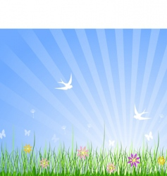 spring meadow background vector image vector image