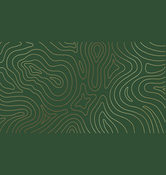 Abstract gold topographic lines green background vector