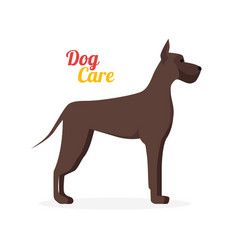 Cartoon dog care vector