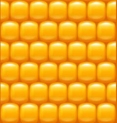 Corn background pattern vector