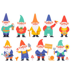 gnome characters cute gnomes with beard funny vector image