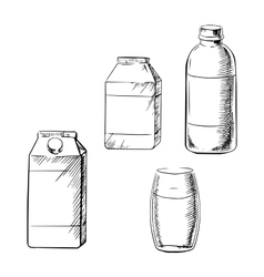Milk bottle glass and cartons sketch vector