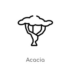 Outline acacia icon isolated black simple line vector