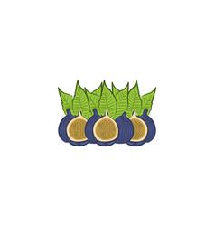 pomegranate fruit logo vector image