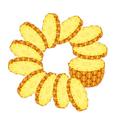sliced pineapple with rings vector image