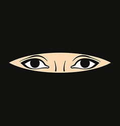 Womans eyes vector image
