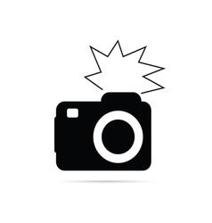 camera flash black and white vector image