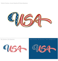 USA flag caligraphic text vector image