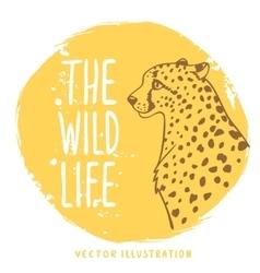 cheetah orange vector image