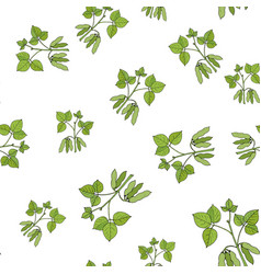 seamless pattern with soybean vector image vector image