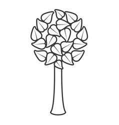 tree leave organic food emblem line vector image