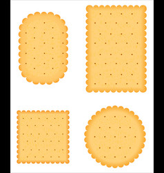 A biscuit vector