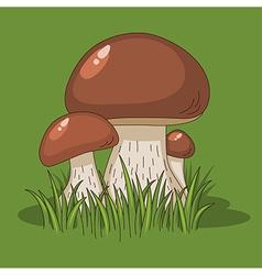 cartoon mushrooms green vector image