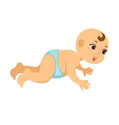 chubby baby boy crawls around with wide open eyes vector image