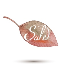 fall sale watercolor leaves vector image