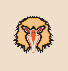 head eagle vector image