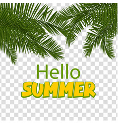 Hello summer green palm leaf transparent vector