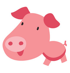 pig with big head on white background vector image