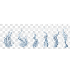 Set of translucent light blue smoke vector