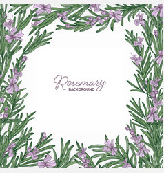 Square backdrop with frame made of rosemary vector