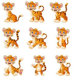 Tiger cartoon set collection vector