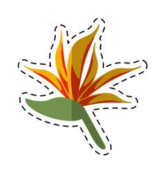 cartoon bird of paradise flower vector image vector image