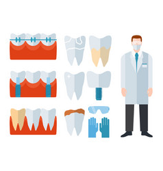 dentist and stomatology equipment vector image vector image