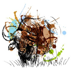 Colored hand sketch African buffalo vector image
