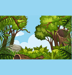 a nature scene background vector image