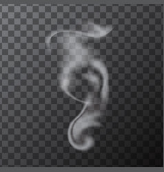 Delicate white realistic cigarette smoke waves vector