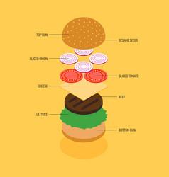 hamburger ingredients infographic isometric flat vector image