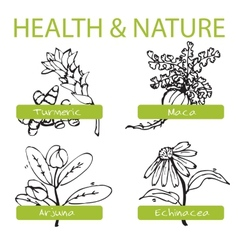 Handdrawn set - health and nature collection vector