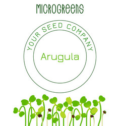 Microgreens arugula seed packaging design text vector