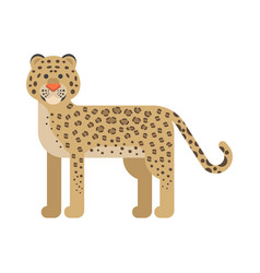 flat style of leopard vector image