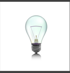 incandescent lamp or bulb vector image