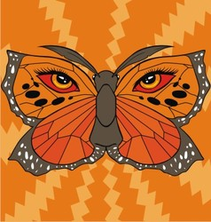 butterfly face vector image