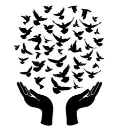 hands releasing peace pigeon vector image vector image