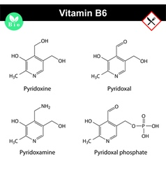 Chemical structures of vitamin b6 forms vector image