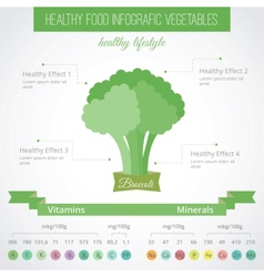 Healthy food flat infographic Broccoli vector