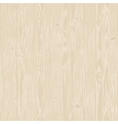 Oak Wood Bleached Seamless Texture vector image