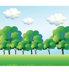 The green trees vector image
