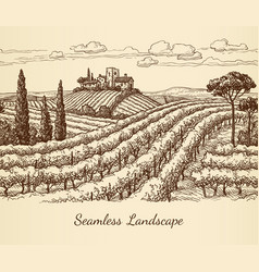 vineyard seamless landscape vector image